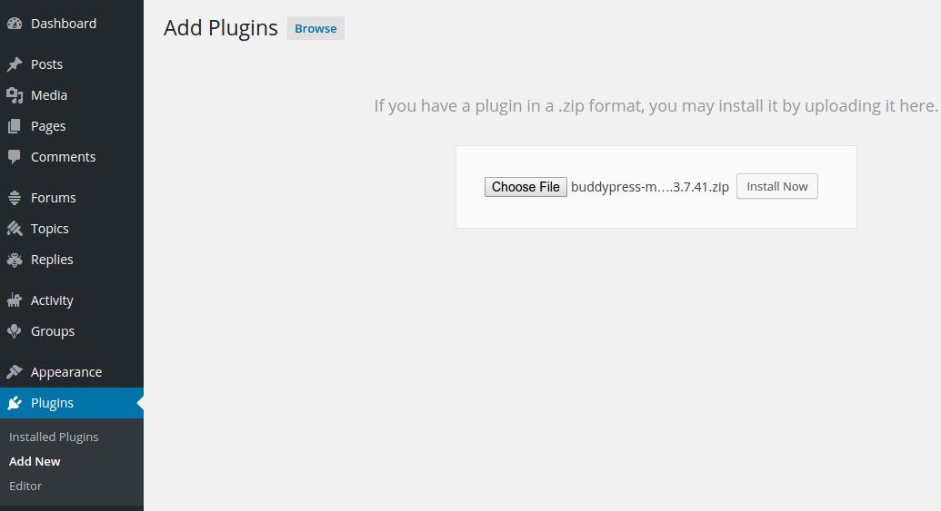install-rtmedia-wp-plugin-directory