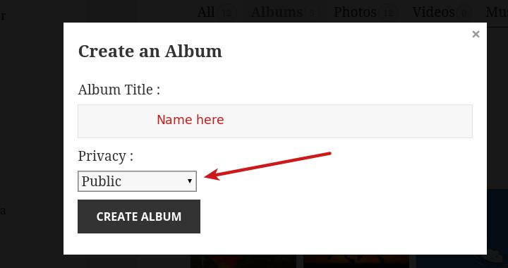 album privacy