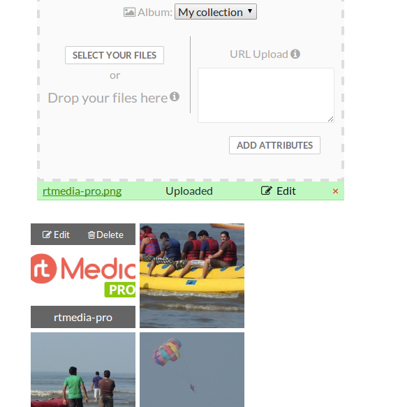 rtmedia-pro-features-media-url2_png