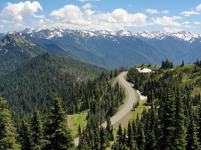 Hurricane Ridge Road from Olympic National Park Mount Angeles Trail
