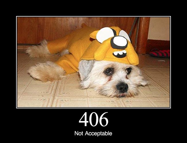 406 1