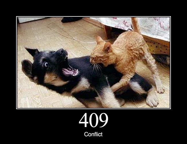 409 1