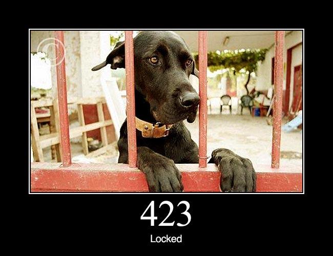 423 1