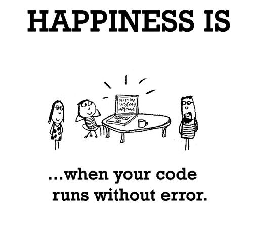 Happiness is When your code runs without error