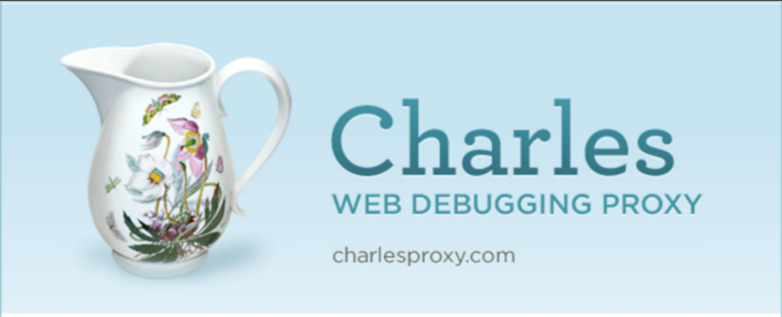 How to Fix Charles Proxy Crash