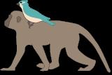 monki-small