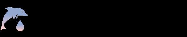 MySQL Provider