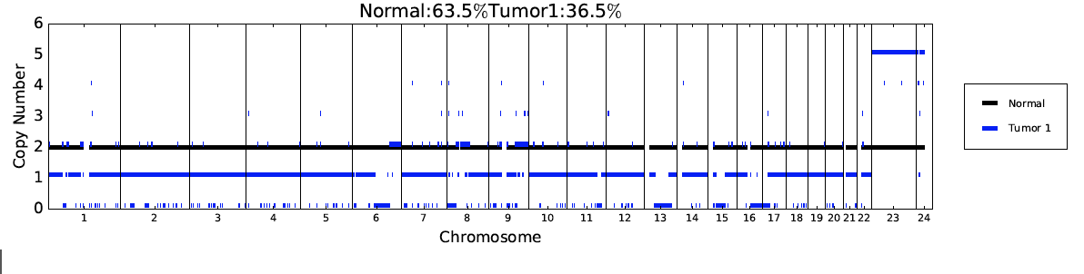 Weird copy number in Tumour
