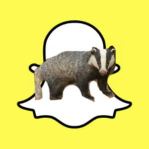 Snapchat for Badgers