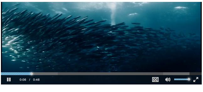 screen shot 2014-07-31 at 3 18 25 pm