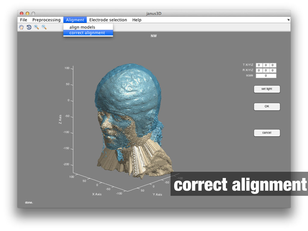 janus3D correct alignment manually