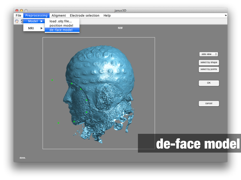 janus3D face selection of the model