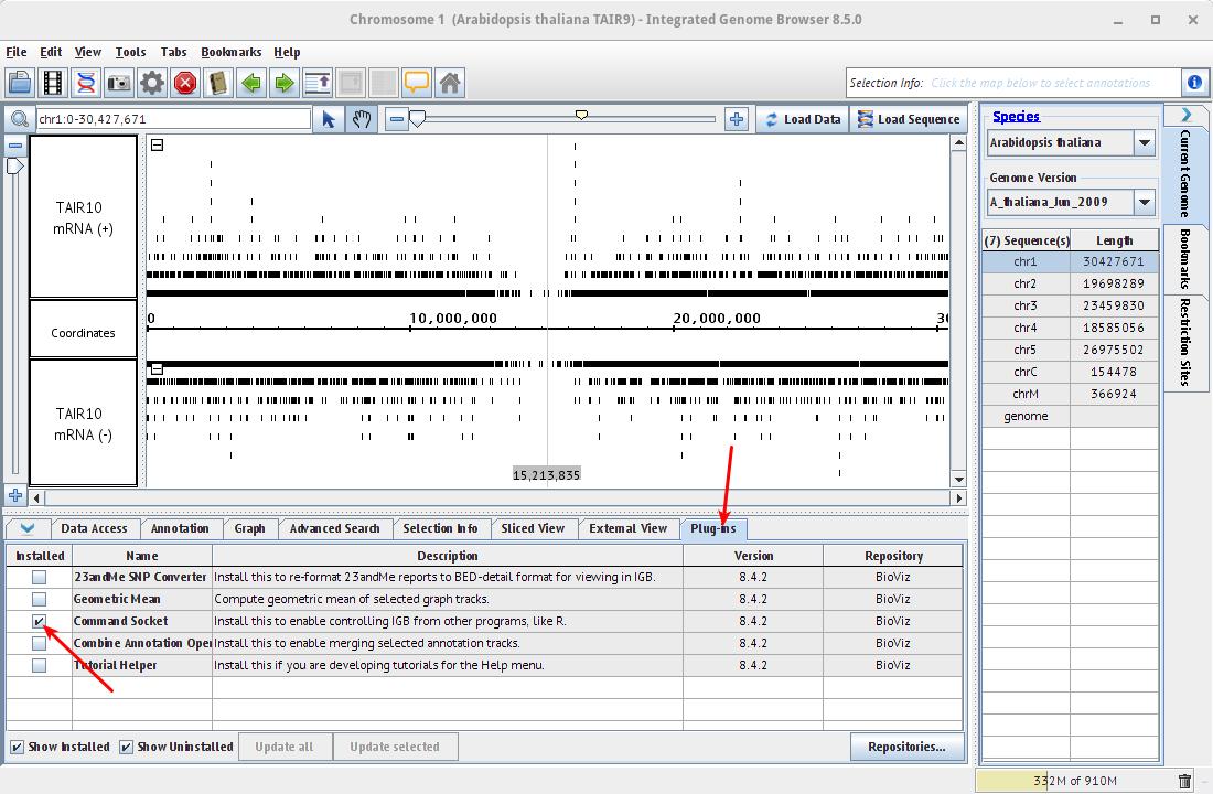 chromosome 1 arabidopsis thaliana tair9 - integrated genome browser 8 5 0_015