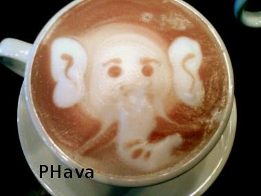 phava