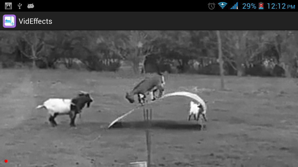 Video screenshot with Black and White Effect