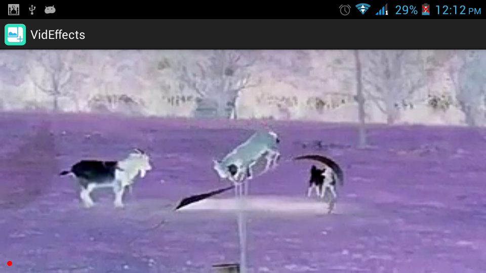 Video screenshot with Invert Colors Effect