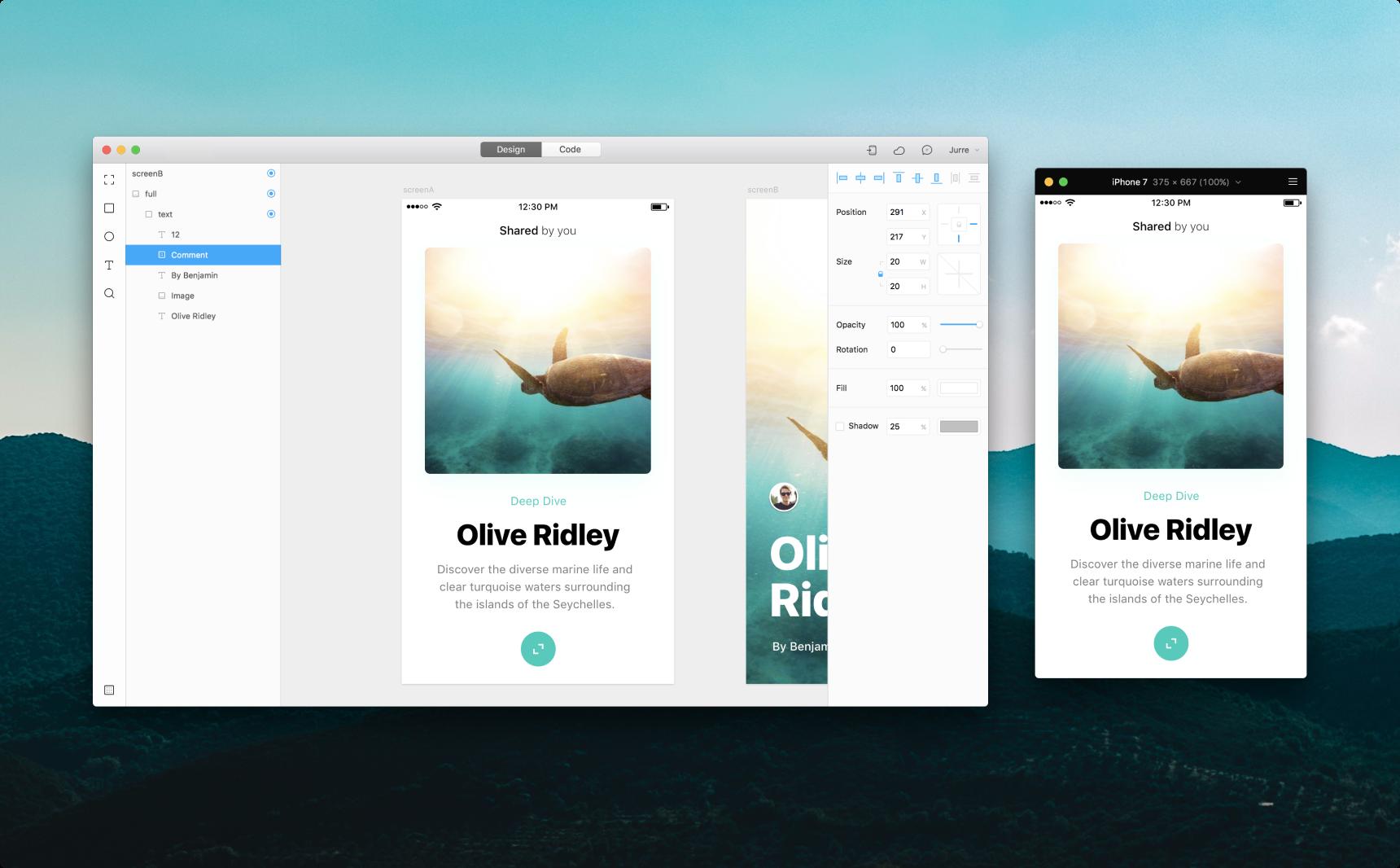 Framer for Mac