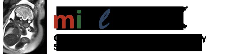 MIALSRTK logo