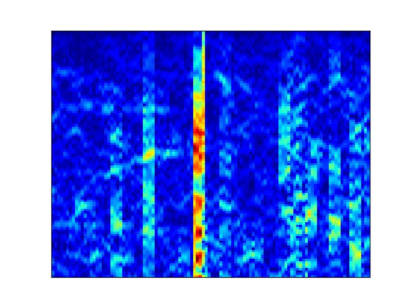 Neg whale spectrogram