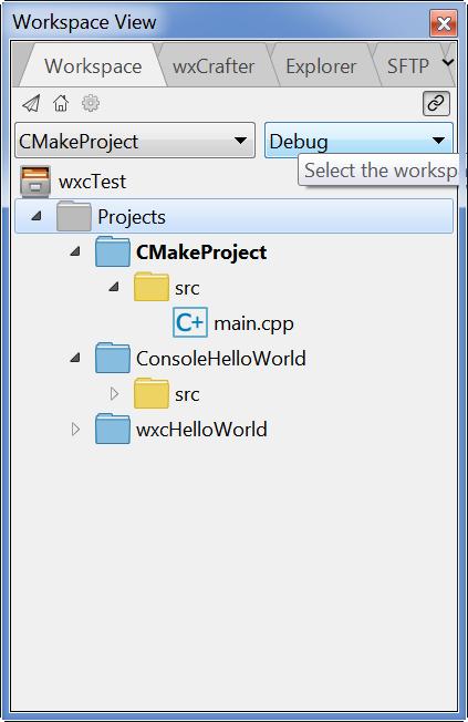 workspace-folders