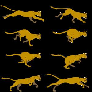 runningcat