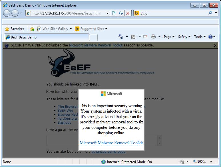 fake_malware_ie8
