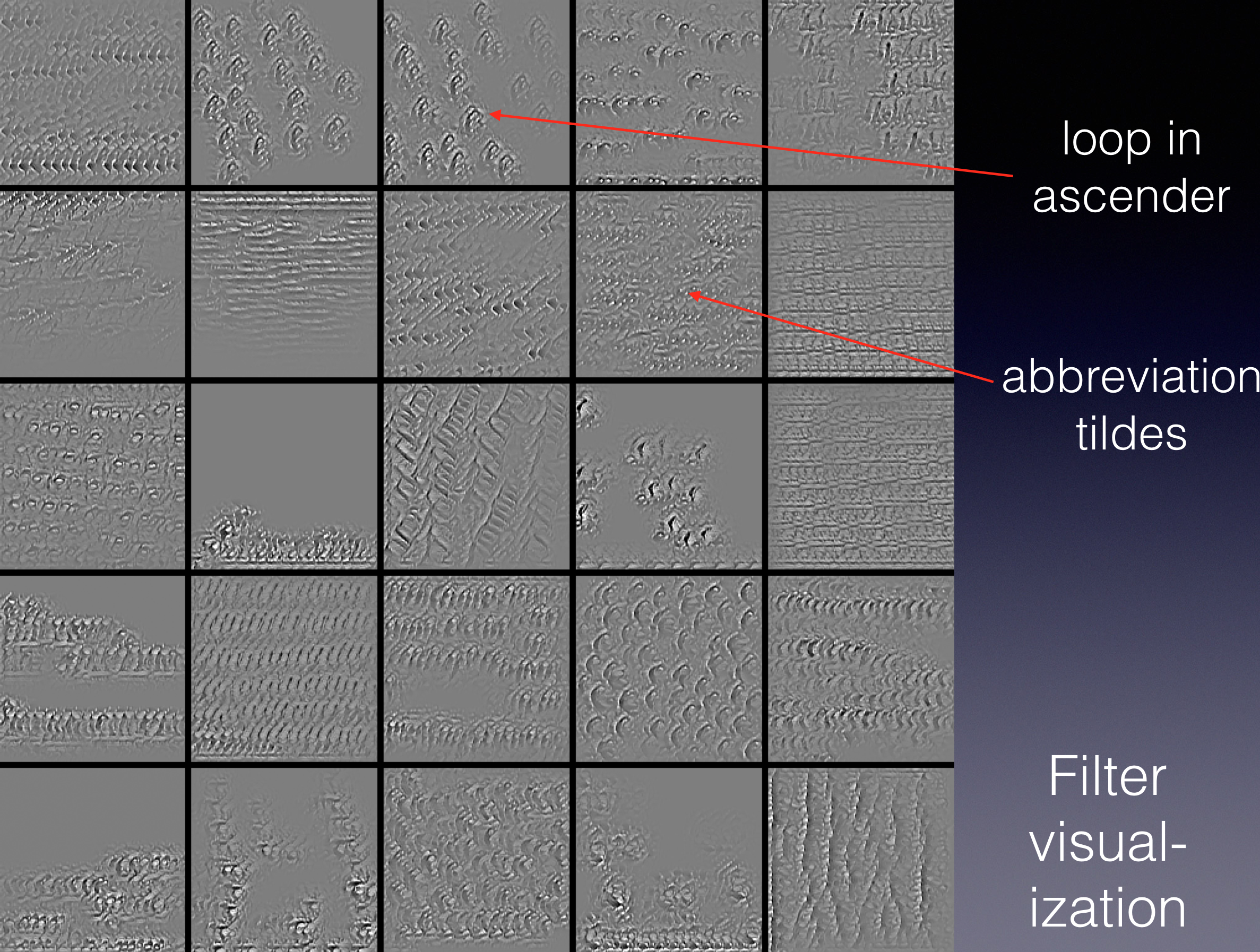 Visualization of filter activations