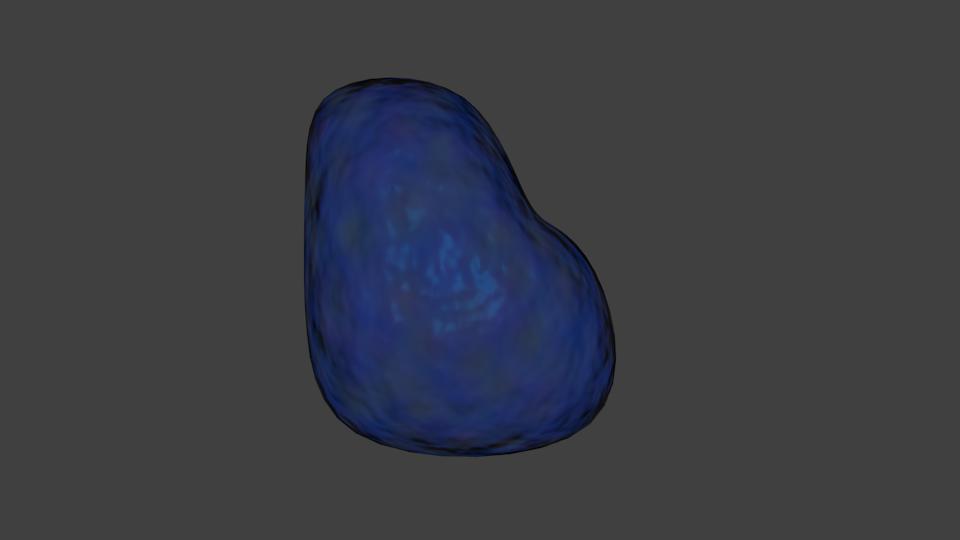 vacuole 1