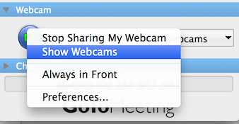 webcam_settings