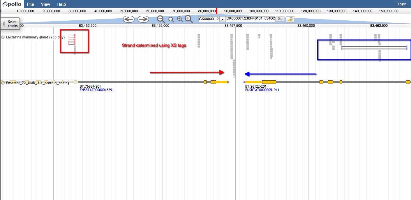 screenshot-genomes missouri edu 8080 2014-07-29 17-25-10