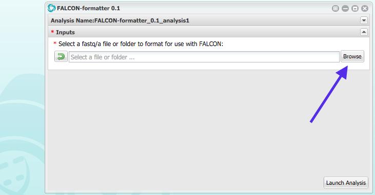 iplant_formatter_02