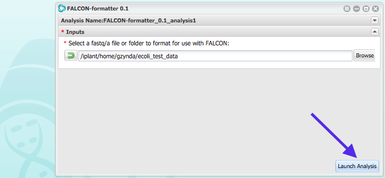 iplant_formatter_04
