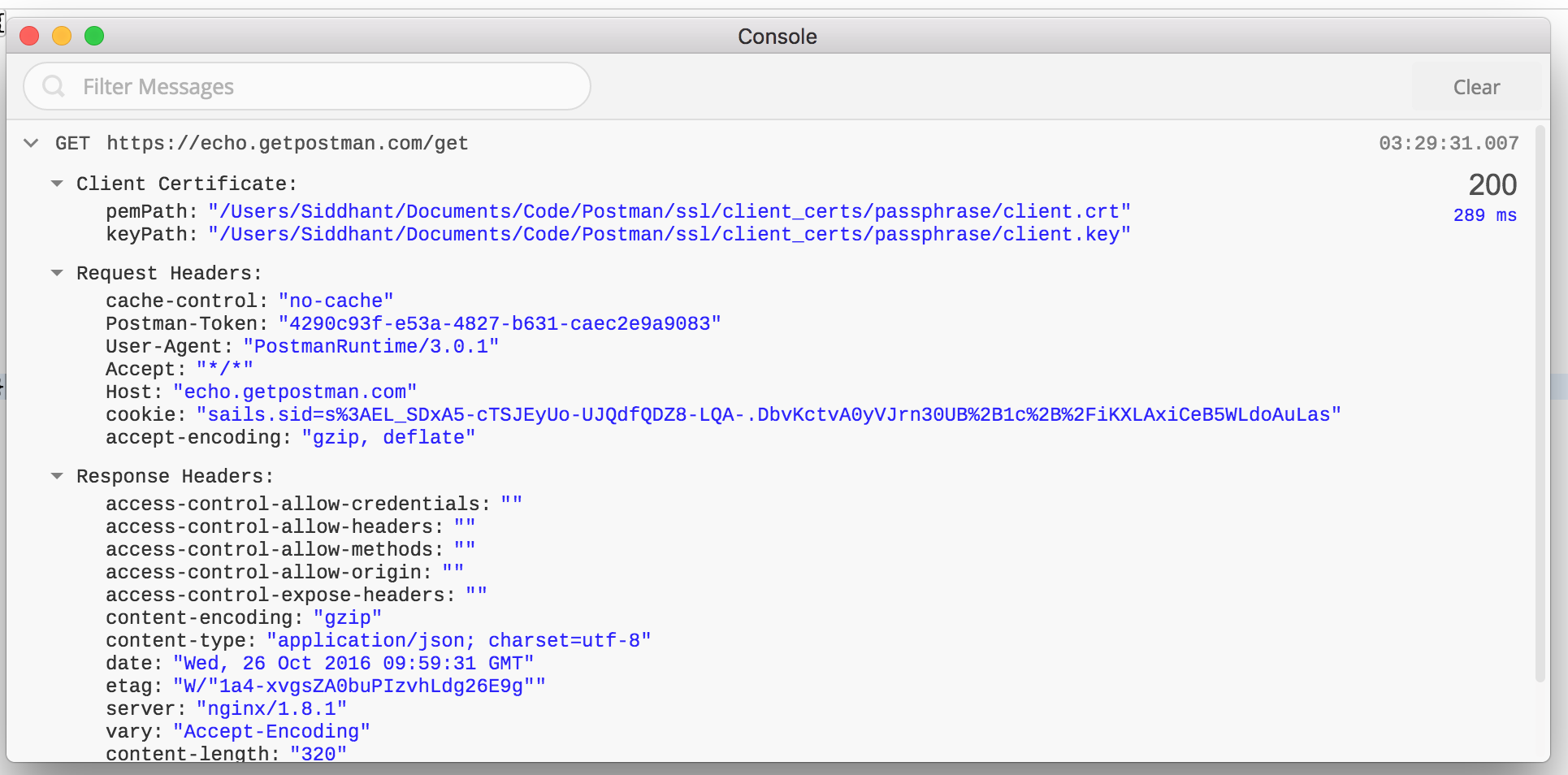 Postman console view