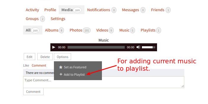 add-to-playlist-option