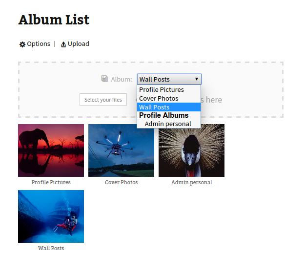 default-album-selection