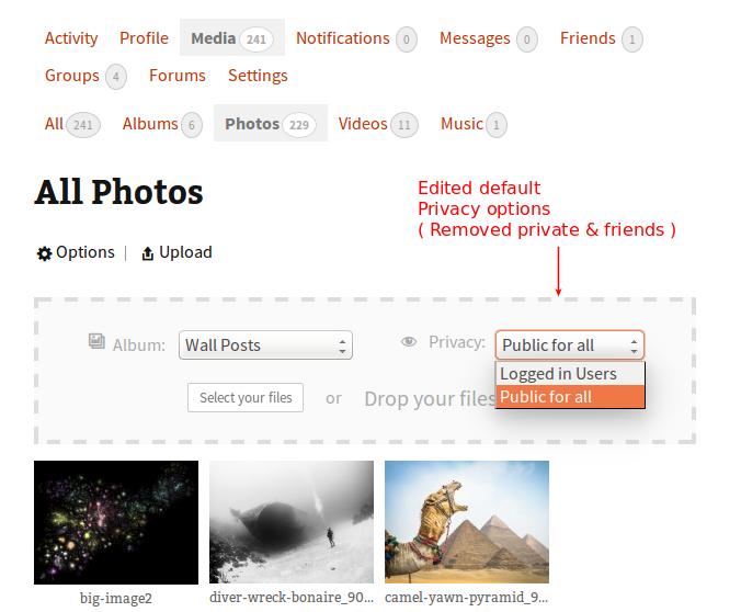 edit-default-privacy-options