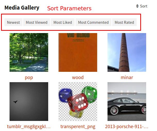 sort parameters