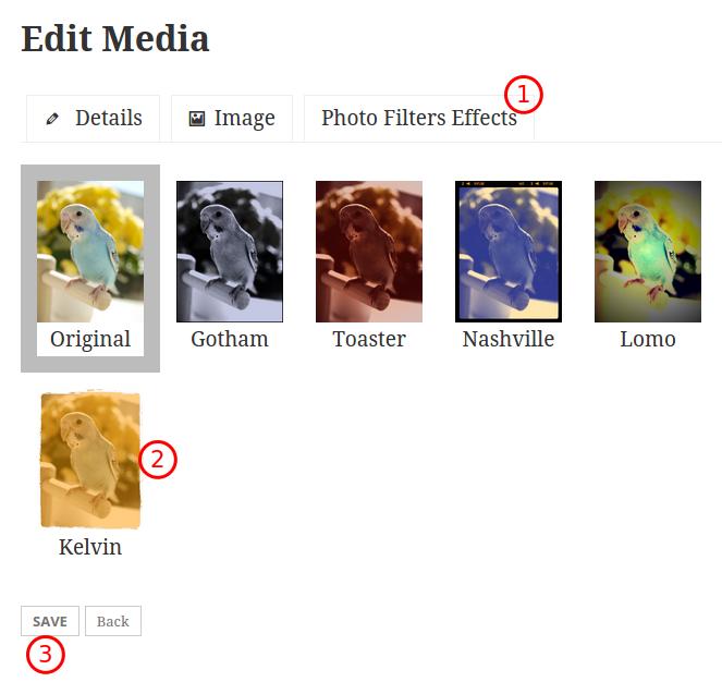 rtmedia-photo-filters