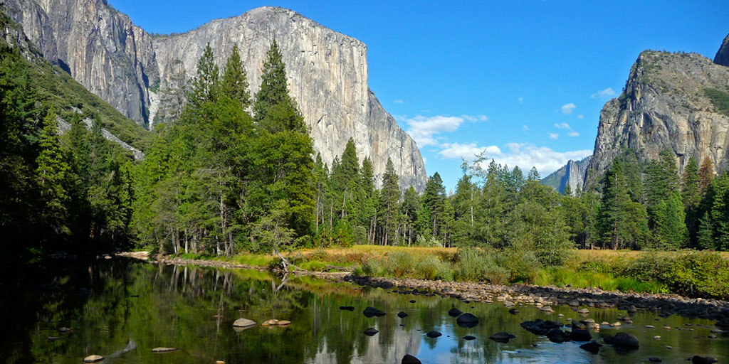 National Park Series: Yosemite National Park