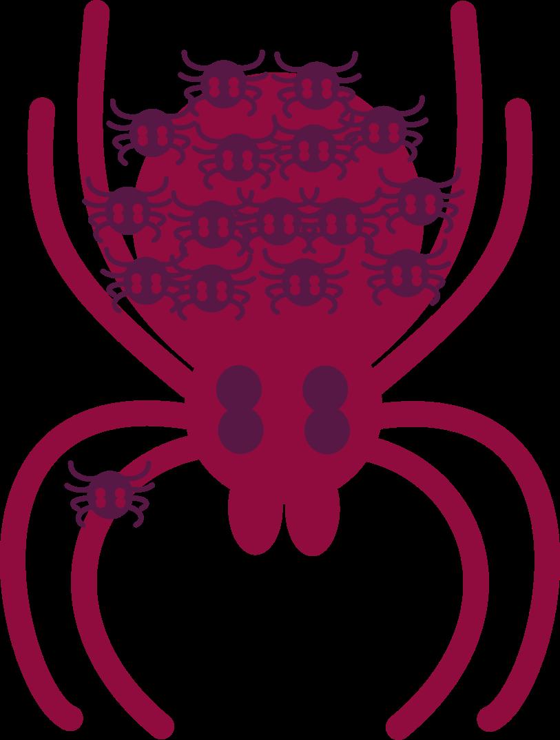 spider logov4 svg