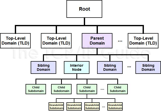 dnstreefamily